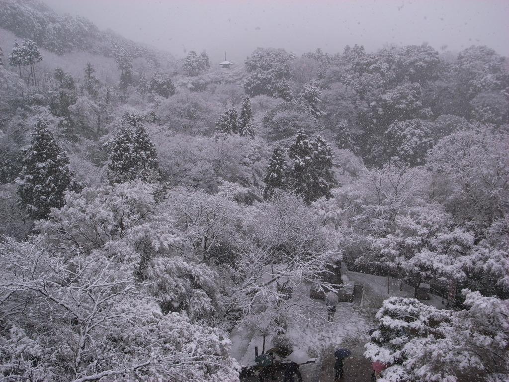 京都 清水寺の舞台より