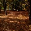 戦場の秋。