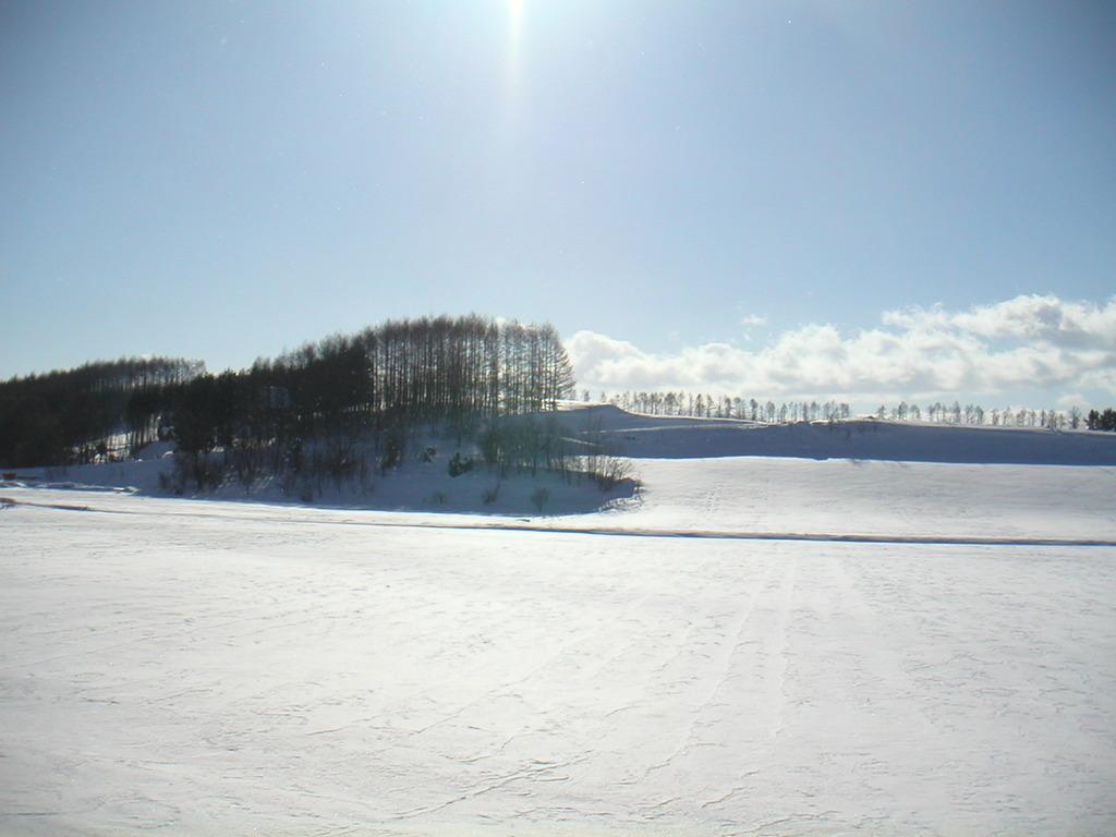 真冬の美瑛