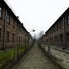 アウシュビッツ第一収容所の鉄格子