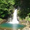 河津七滝が一つ