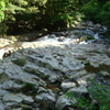 河津七滝が一つらへんの渓流の部分