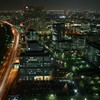 百道の夜景
