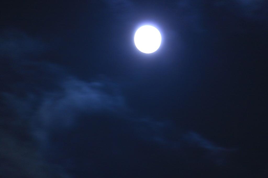 十五夜お月さん!