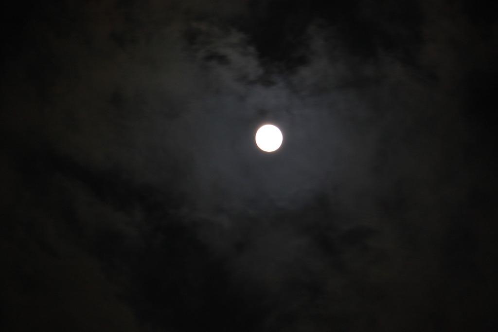 十五夜お月さん3!