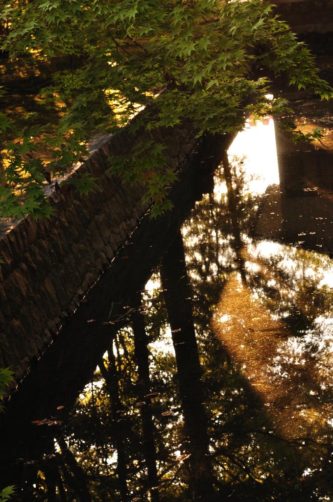 社の横の水路