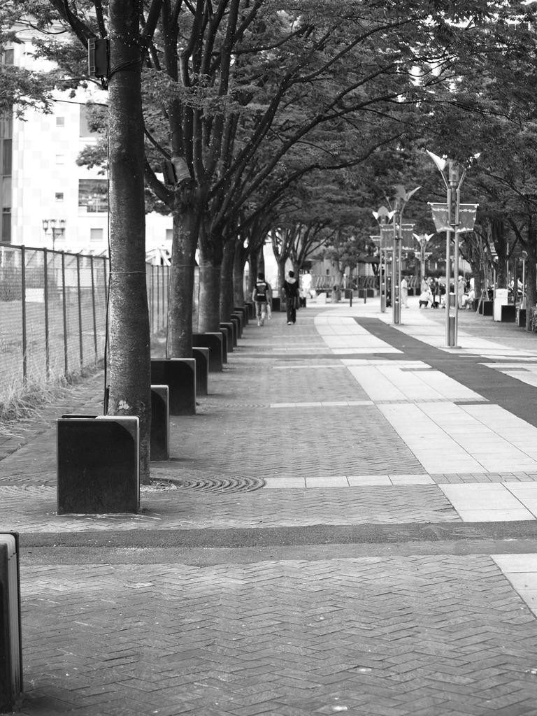 ハーバーランドの歩道