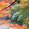 亀山湖-2