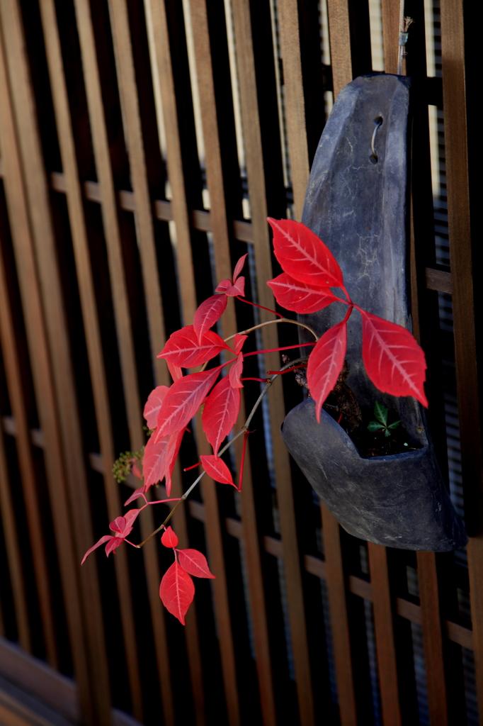 奈良井宿にて…