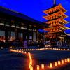 なら燈花会-興福寺