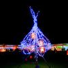 なら燈花会-奈良公園