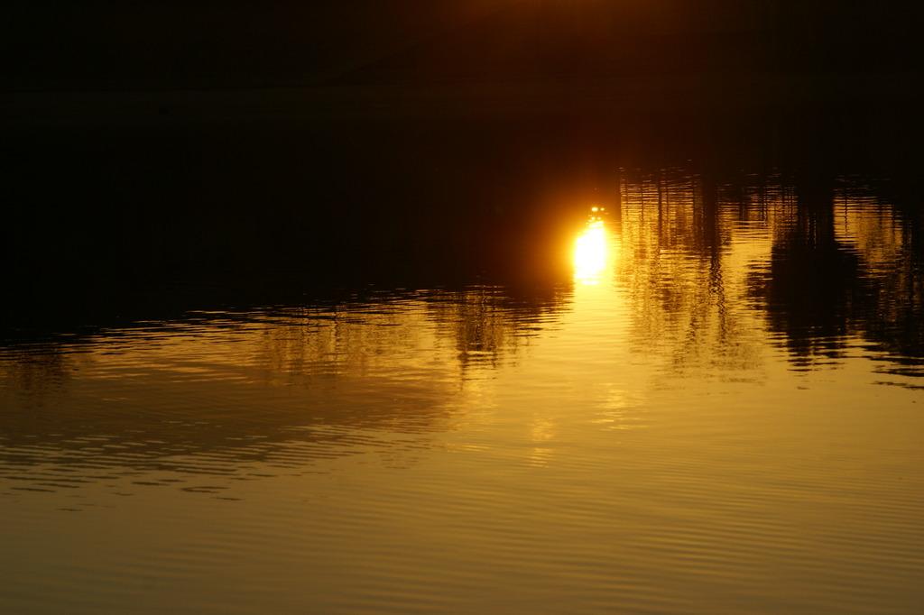 アメ色の光