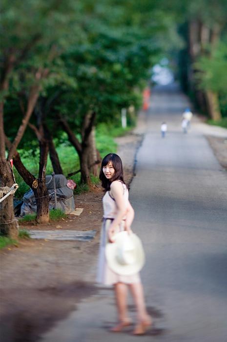 その夏の散歩道・・・
