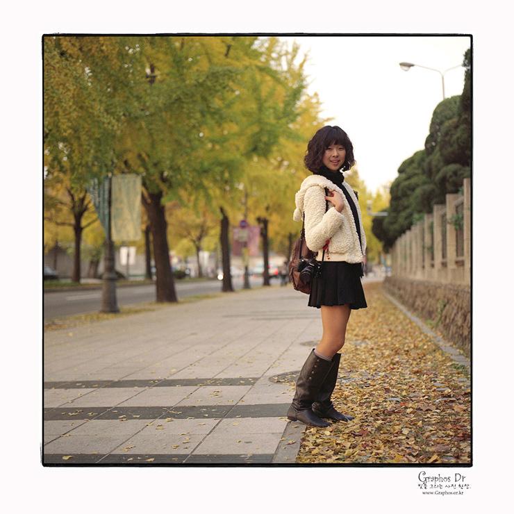 Walk on Autumn Leaves ...