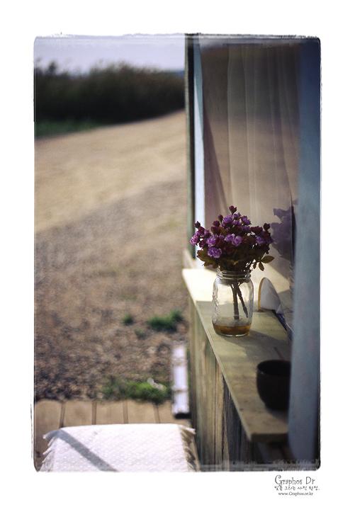 私の窓べで見える風景・・・