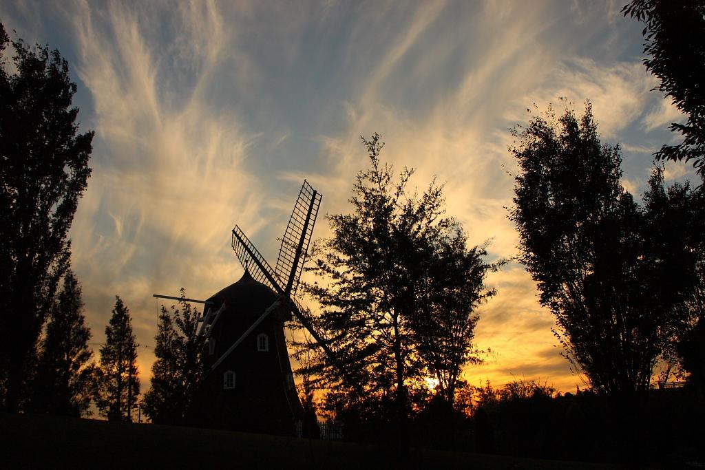 夕日と風車