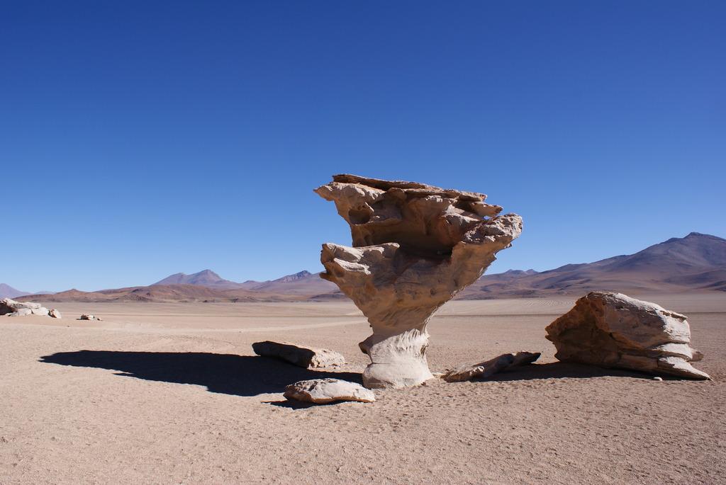 昔ここは海だった!? 標高4000mのアンデス山脈ですが・・・。