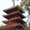 高知県・五台山・五重塔