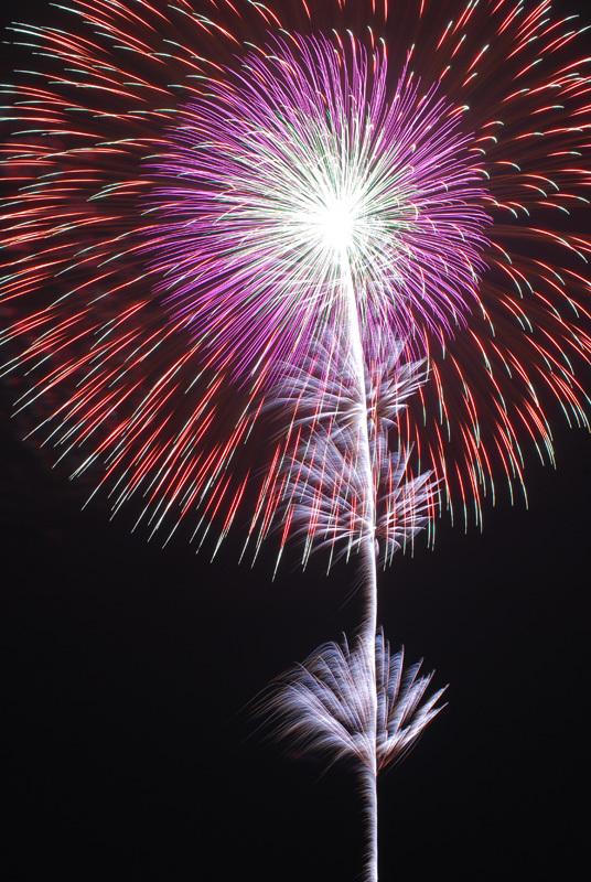 盛岡花火の祭典2009 (8)