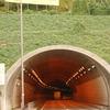 昼顔のトンネル^^