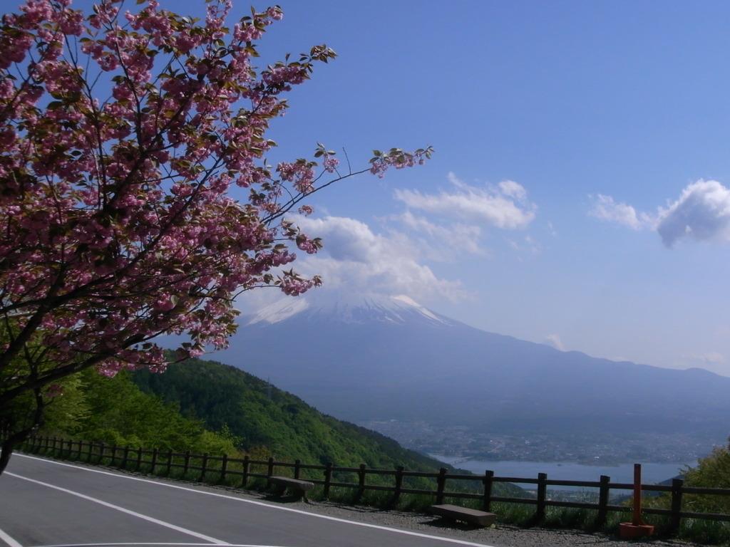 富士 天下茶屋