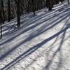 護摩壇山の雪景色