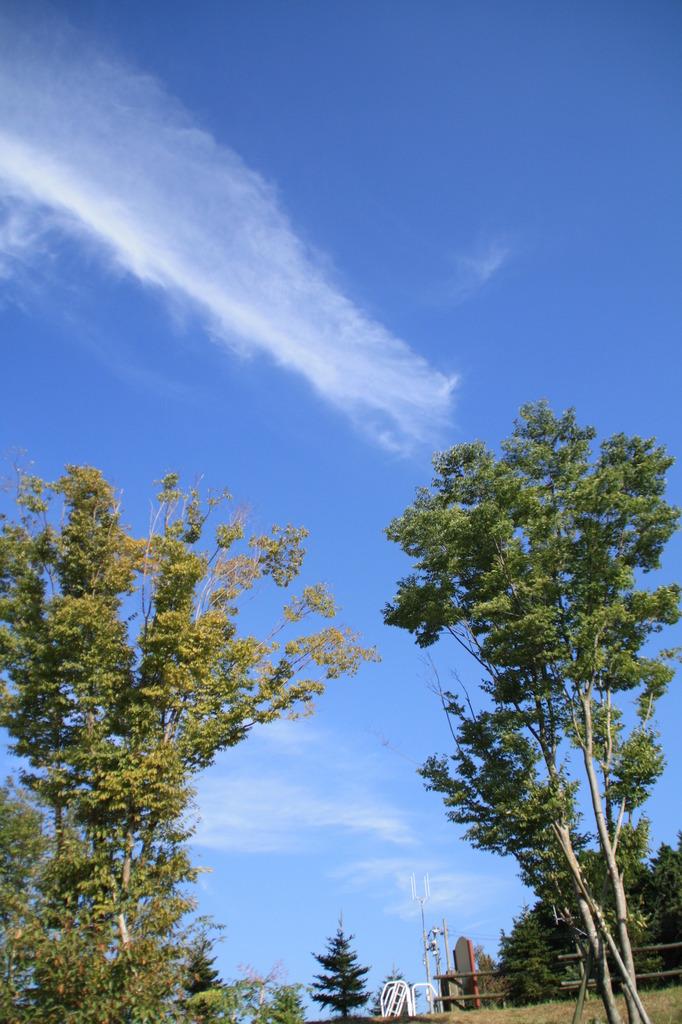 秋の空 高く