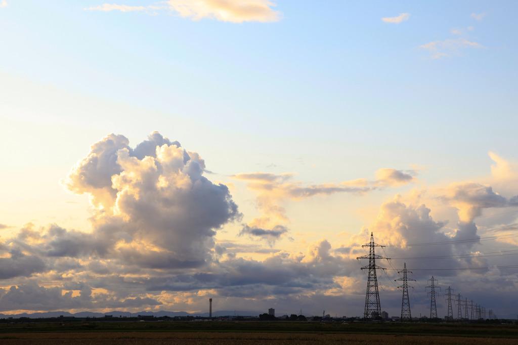 電線と夕空