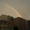 ビルの屋上から虹