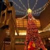 オペラシティのクリスマス