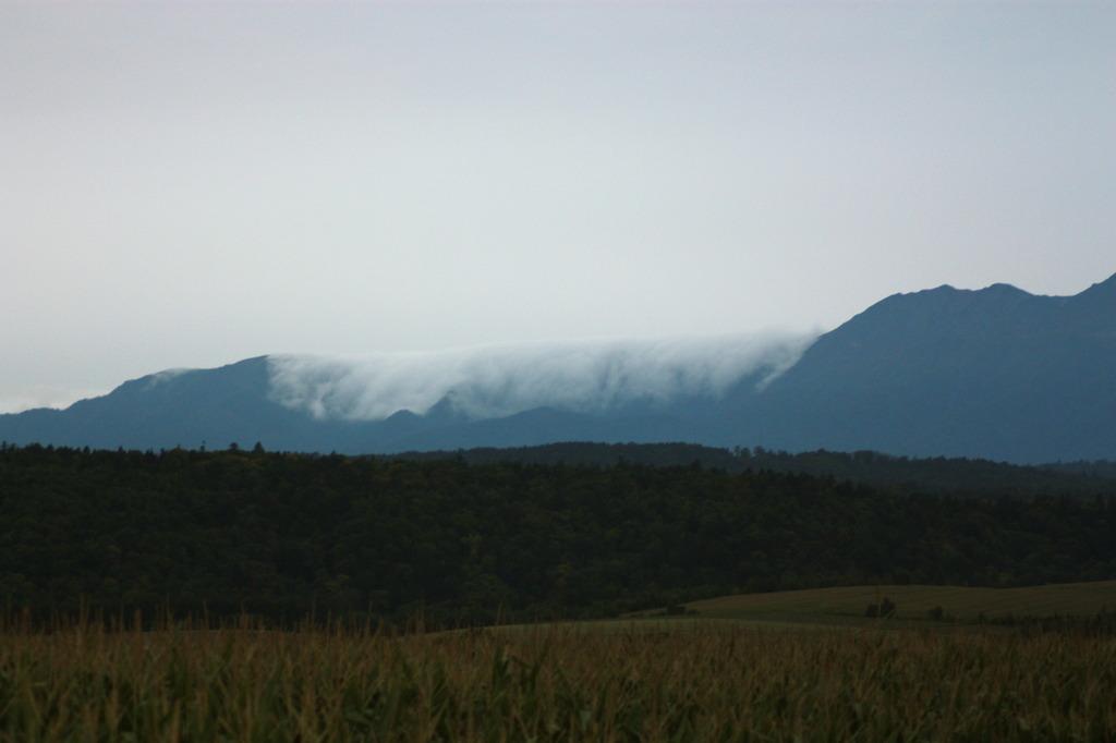 霧のカーテン