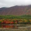 湖、紅葉、緑、山、白