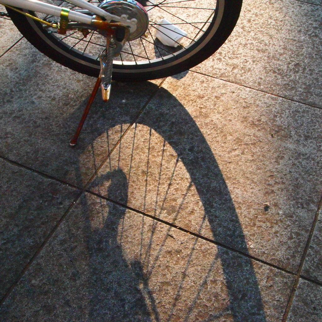 20090823青葉公園6