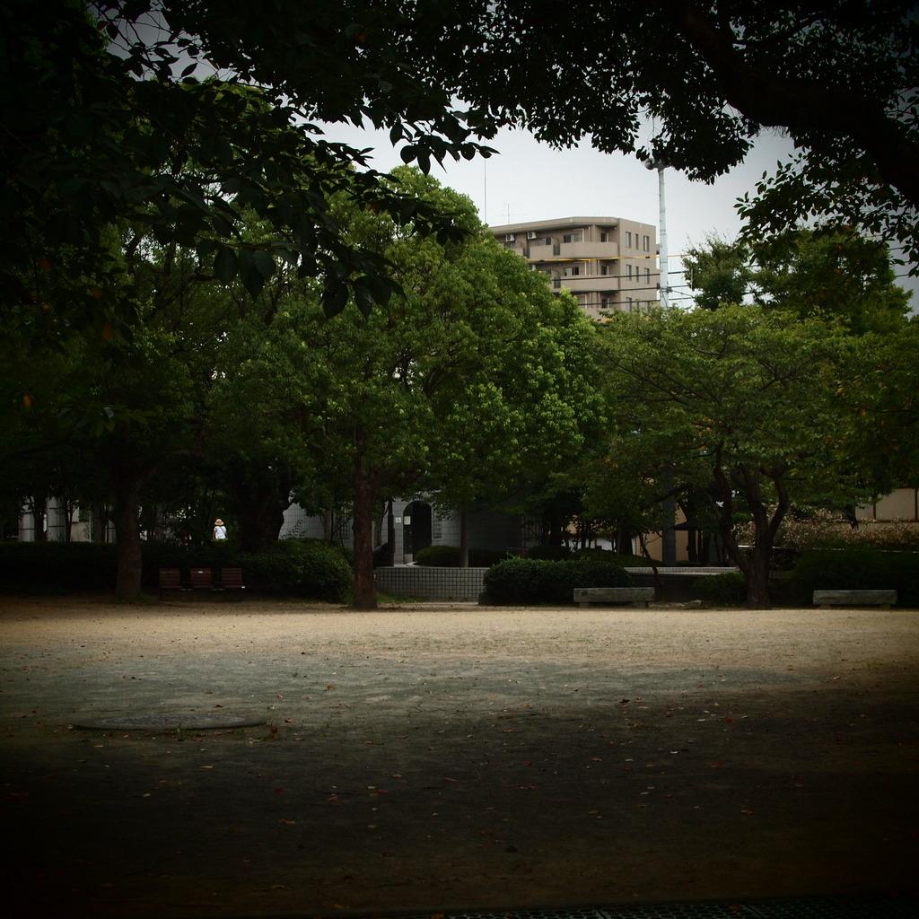 20090821常盤公園