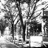 20090823青葉公園