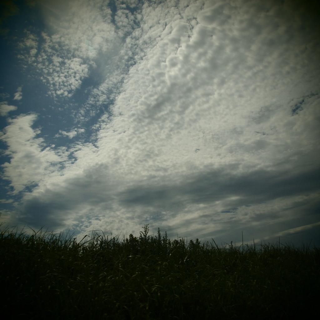 20090823空8