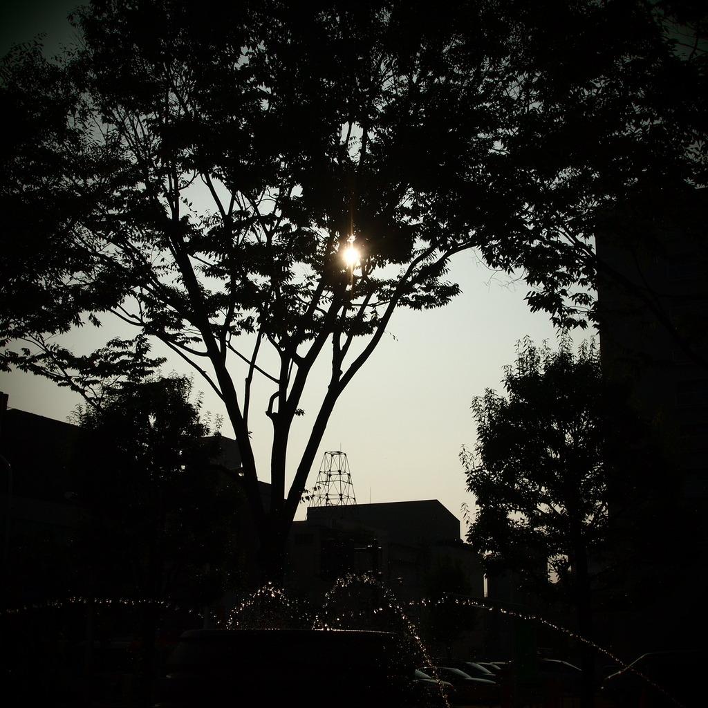 20090823青葉公園2