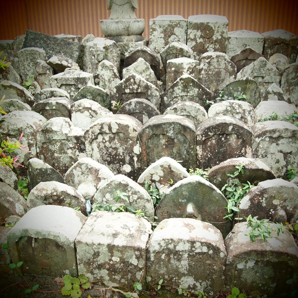 20090823墓参り