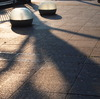 20090823青葉公園5