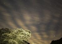 RICOH IMAGING PENTAX K-1で撮影した(報道ステーション中継前夜の仏隆寺 ^^)の写真(画像)
