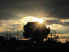 夜明けの光