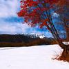 11月4日 奧大山スキー場