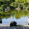 池を見つめる少年