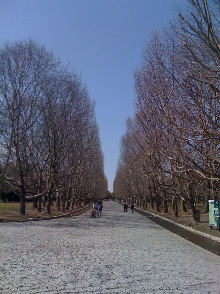 万博公園 iphone