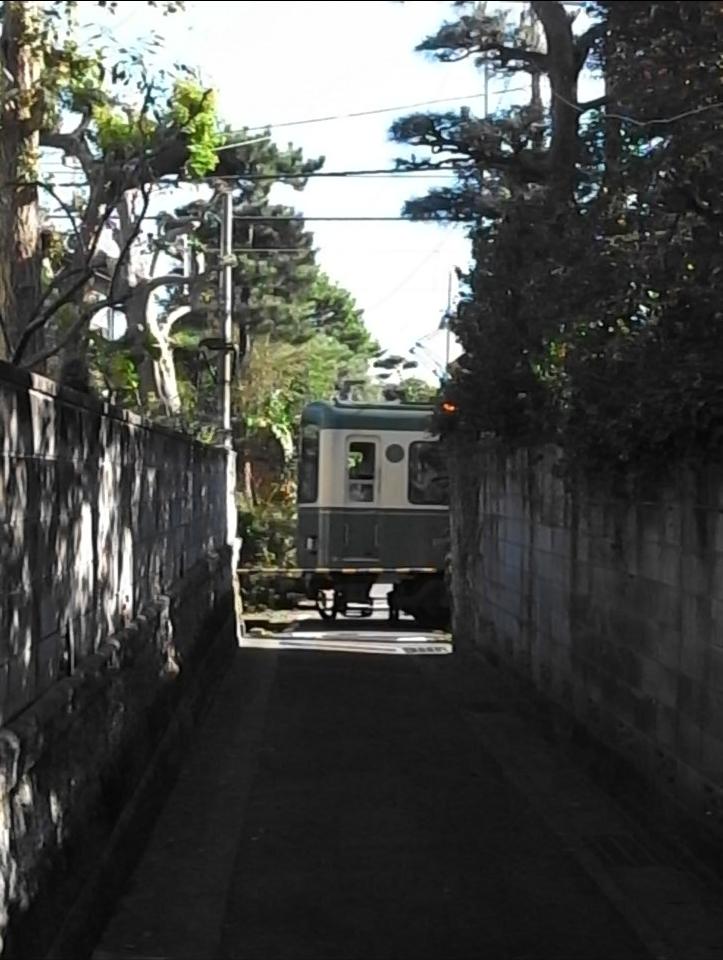 江ノ電 グリーン