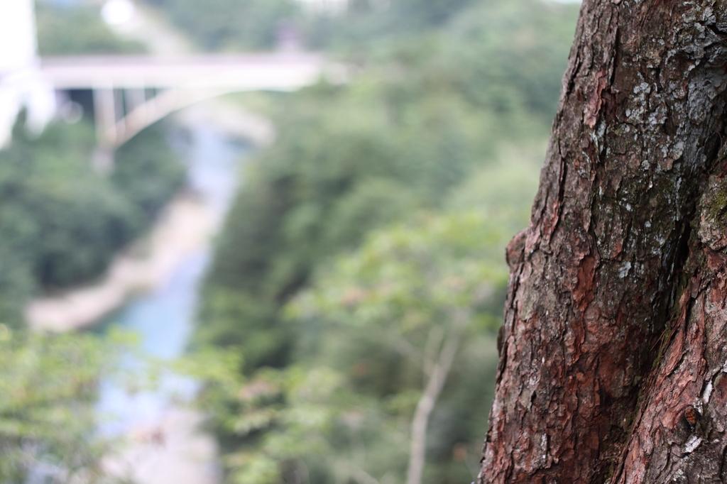 鬼怒楯岩大吊橋6