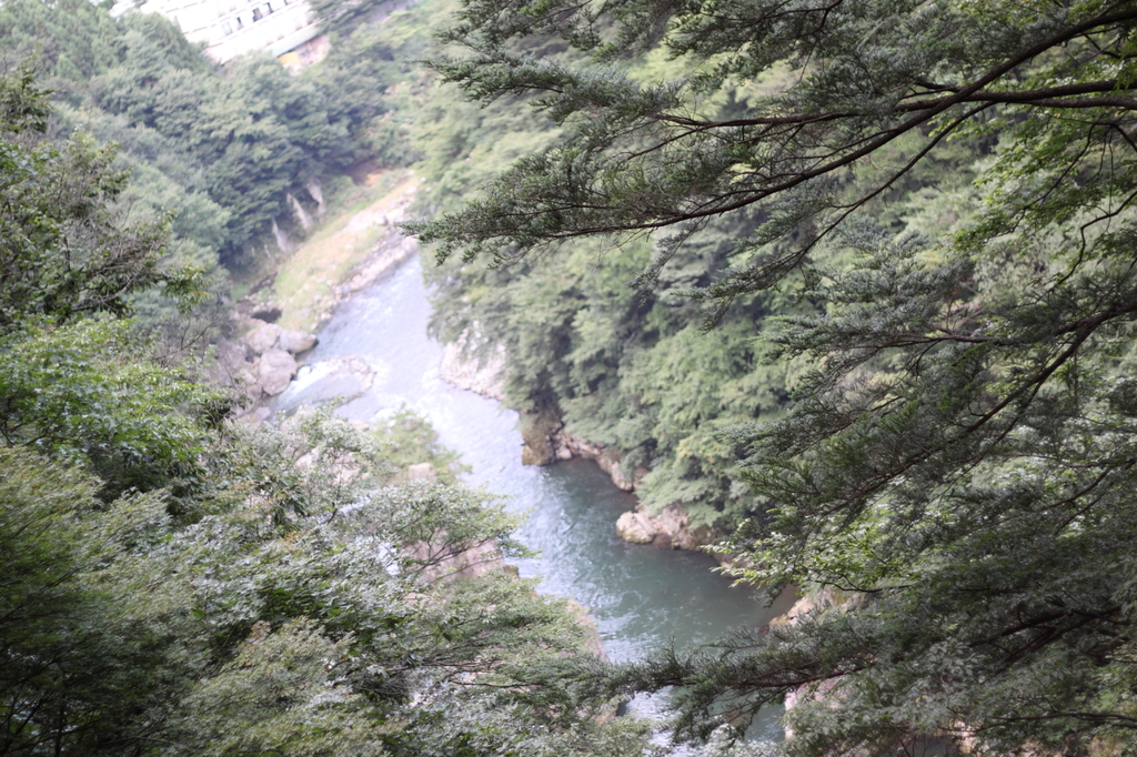 鬼怒楯岩大吊橋1