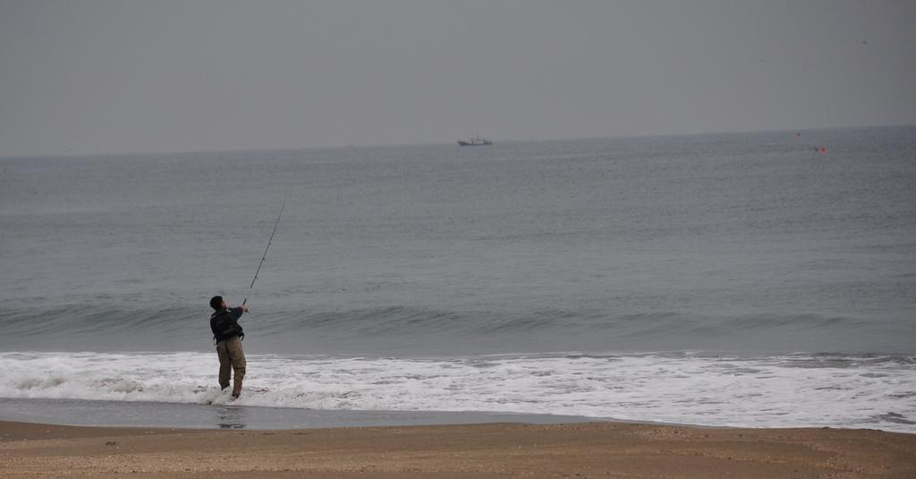 世界を釣る
