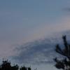 月 雲 松