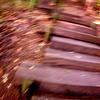 揺れる階段
